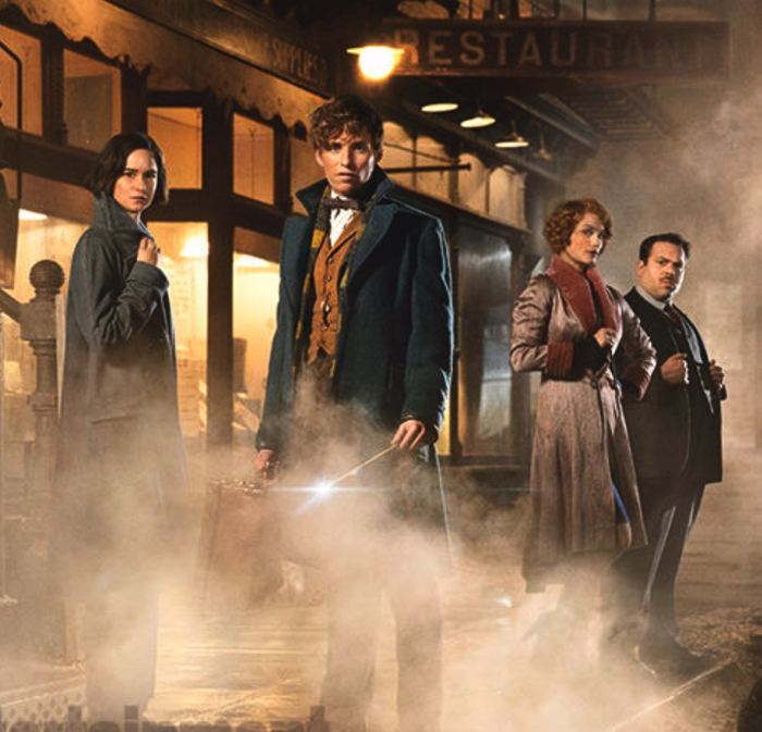 "From the movie ""Fantastic Beasts And Where To Find Them"""
