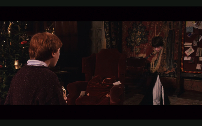 "Scene of nvisibility cloak from movie ""Harry Potter and the Philosopher's Stone"""