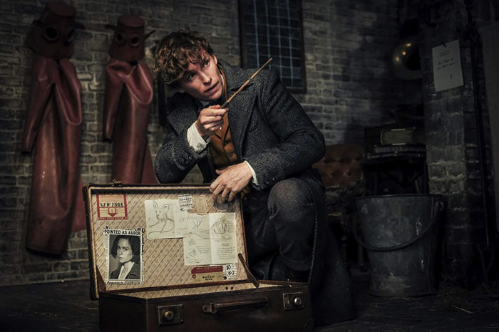 "Eddie Redmayne plays from the movie ""Fantastic Beasts: The Crimes of Grindelwald"", Newt Scamander"